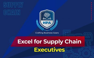 Excel for Supply Chain Executives